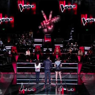 the voice contestants 2011. the voice contestants